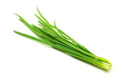 Onion. Some spring onion isolated on the white background Stock Photos