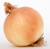 Onion. Isolated on white, macro close up with copy-space, copy space Royalty Free Stock Image