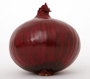 Free Onion Royalty Free Stock Images - 1193029