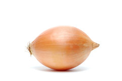 Onion. The Beautiful onion close-up, isolated, background royalty free stock photography