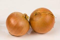 Onion. On a white background Royalty Free Stock Photos