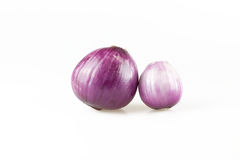 Onion. Two onions on a white background Stock Images