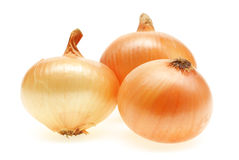 Free Onion Royalty Free Stock Photography - 13571347