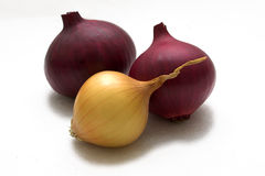 Onion. Yellow and red bulbs on a white background. A close up Royalty Free Stock Photography