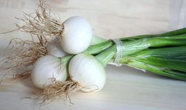 Onion. Some onions on a desk royalty free stock photos