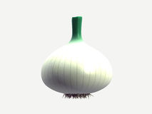 Onion. White onion made in 3d isolated Royalty Free Stock Photos
