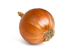Onion 2 Royalty Free Stock Photos