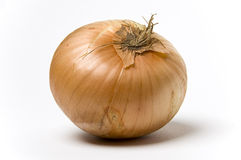 Onion. A raw onion shot against a white background Stock Photos