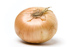 onion Στοκ εικόνα με δικαίωμα ελεύθερης χρήσης