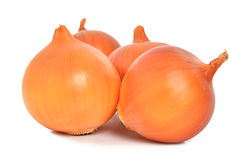 Onion. Isolated on a white background Stock Photos