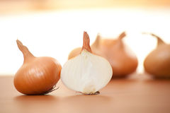 Onion Royalty Free Stock Image