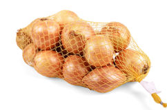 Onion Royalty Free Stock Photo
