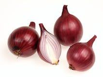 Onion. Bulbs on a white background Royalty Free Stock Photos