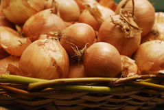 Onion. Basket full of fresh onion Stock Photo