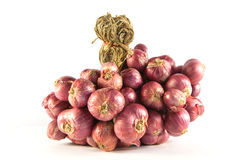 Onion. Bunch of onions on white background Royalty Free Stock Images