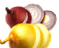 Onion Stock Image