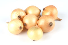 Free Onion Royalty Free Stock Images - 4124099