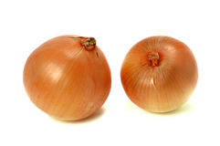 Onion. Fresh onions on a white background Royalty Free Stock Photos