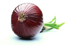 Onion. Red onion on white background Royalty Free Stock Image