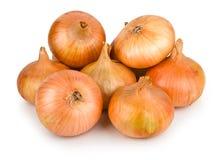Onion. Arrangement of few ripe fresh onions Royalty Free Stock Photography