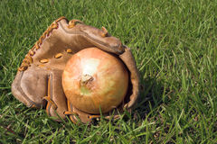 Onion in baseball glove Royalty Free Stock Photos