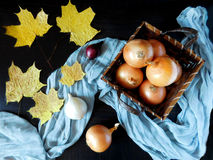 Onion in a basket. Surrounded by autumn leaves stock image