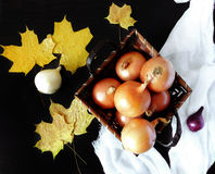 Onion in a basket. Surrounded by autumn leaves royalty free stock image