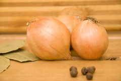 Onion, bay leaf and black pepper Royalty Free Stock Photos