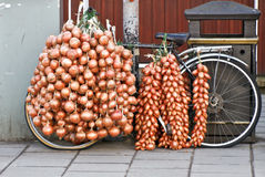 Onion Bicycle. Bicycle loaded with fresh onions and shallots Stock Images