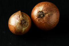 Onion on a black background stock photo