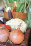 Onion bombay royalty free stock photos