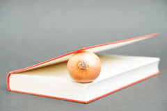 Onion in a book Stock Photography