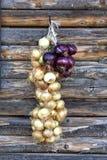 Onion braid Stock Photography