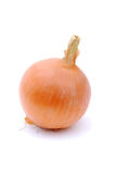 Onion bulb Stock Photo