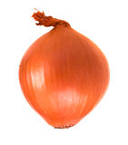 Onion bulb Royalty Free Stock Photography