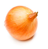 Onion Bulb. Single yellow onion isolated on white background royalty free stock photo