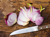 Onion bulb and sliced onions and knife Royalty Free Stock Photography