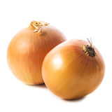 Onion bulbs Royalty Free Stock Image