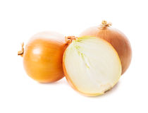 Onion bulbs Royalty Free Stock Images