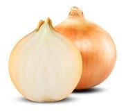 Onion Bulbs Stock Photography