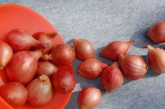 Onion Bulbs And The Bowl. Onion bulbs in bulk and the bowl of orange color on grey background Stock Image