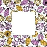 Onion bulbs card Stock Photo