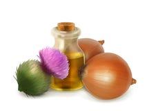 Onion and burdock folk medicine Stock Photography