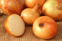 Onion on burlap Royalty Free Stock Photos