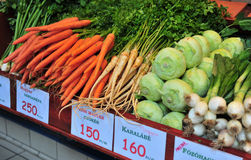 Onion, Cabbage, Carrot Royalty Free Stock Photography