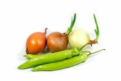 Fresh Onion, Chili Pepper. Onion, Chili Pepper on white background Royalty Free Stock Photos