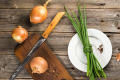 Onion and chive Stock Photography