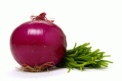 Onion and Chives stock images