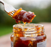 Onion chutney. Eating onion chutney with fork, natural light Royalty Free Stock Photo