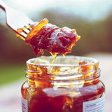 Onion chutney, toned picture Royalty Free Stock Photography